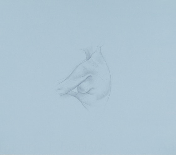 Flank Study, 2017, silverpoint on prepared paper, 10 x 9 inches (sheet size)